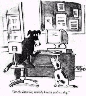 Internet_dog1